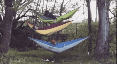 Madera Outdoor Non Discountable Promo Buy One Hammock Get 2 FREE | Landing Page madera outdoor hammock companies that plant trees best camping hammocks cheap camping hammocks cheap hammocks cheap backpacking hammocks