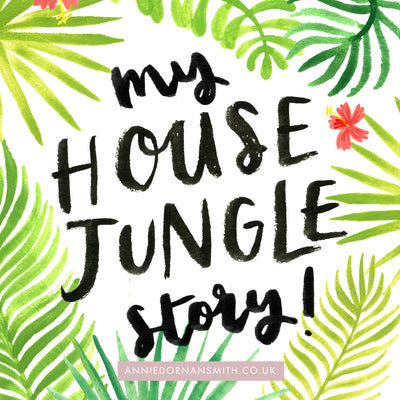 My House Jungle Story