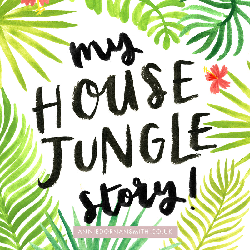 My House Jungle Story - how I ended up writing and illustrating a published book! - Annie Dornan Smith