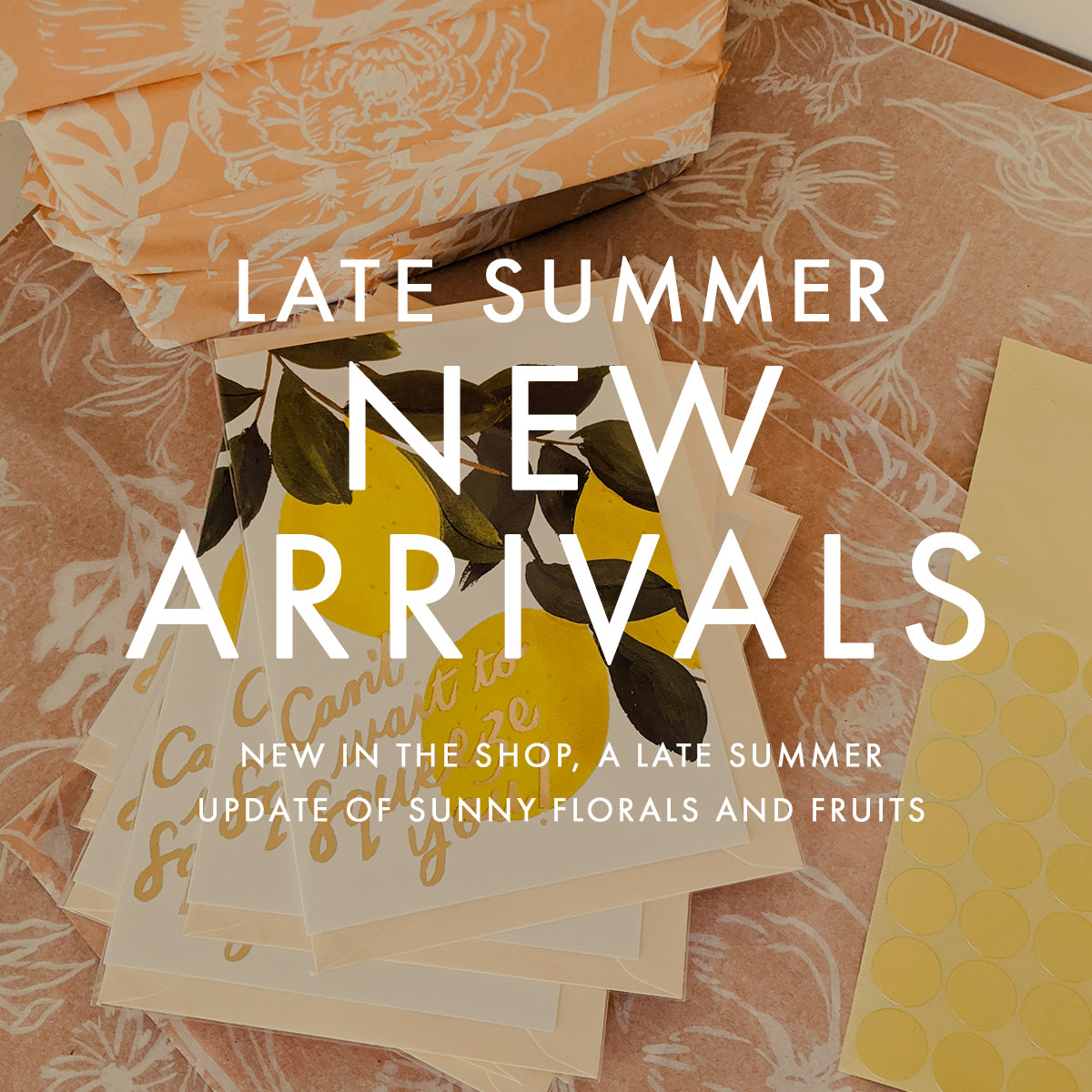 19 New Arrivals for Late Summer