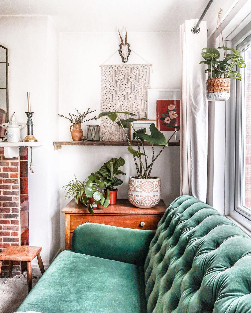 A bright, boho living room with a green velvet sofa, vintage side table and floating wooden shelving. A red floral print is nestled on the shelves amongst the plants and macrame