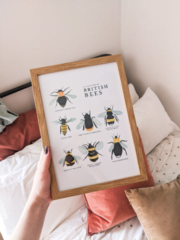 Holding the British Bees Print, Framed