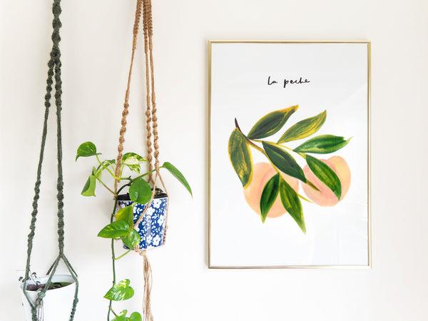La Peche Print hanging on a wall alongside hanging planters - Annie Dornan Smith