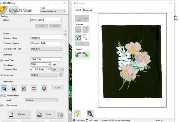 Scanning a painting in Professional Mode