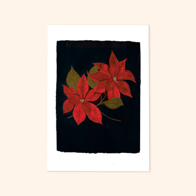 A print of two painted red Poinsettia flowers on a black background.