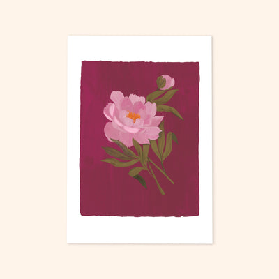 a print of a pink peony and flower bud painted on a deep purple-pink background