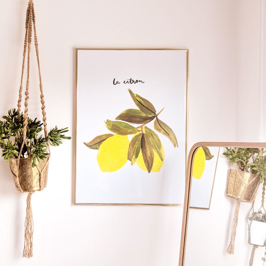framed lemon print hanging on a wall with a macrame plant hanger