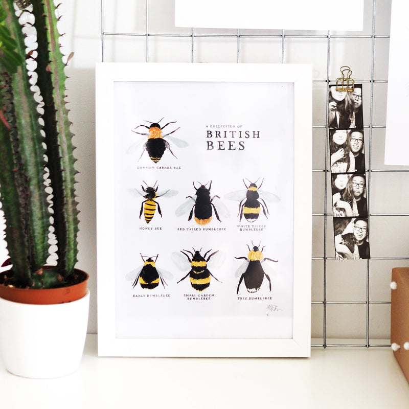 A Collection of British Bees Print A4 - Annie Dornan-Smith Design