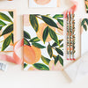 Peach Pattern Notebook - Annie Dornan-Smith Design