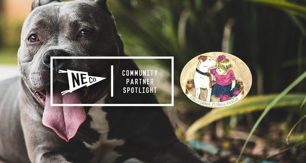 Community Partnership Spotlight: California Pit Bull Rescue