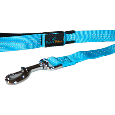 DFF Blue Paw Prime's Rechargeable LED Leash V2