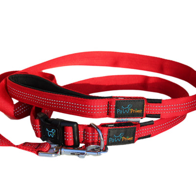 DFF Red Paw Prime's Rechargeable LED Leash V2