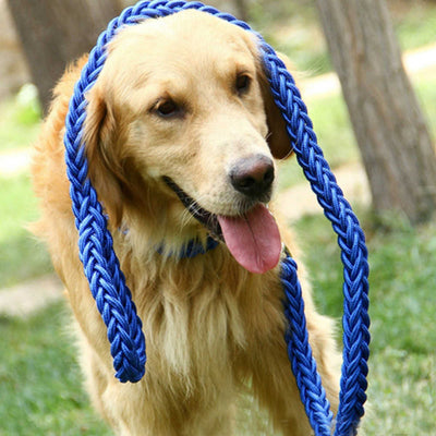 paw prime Blue Woven Nylon Rope Leash + Matching Collar