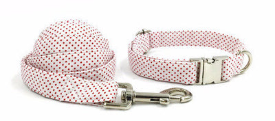 Paw Prime collar and leash / XS Polka Dot