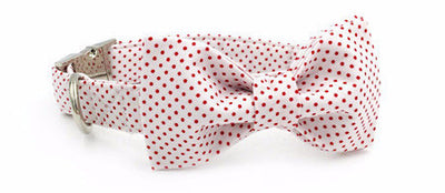 Paw Prime collar with bowtie / XS Polka Dot