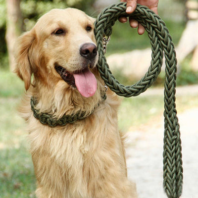 paw prime Green Woven Nylon Rope Leash + Matching Collar