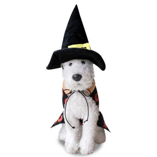 Paw Prime Halloween Dog Wizard Costume