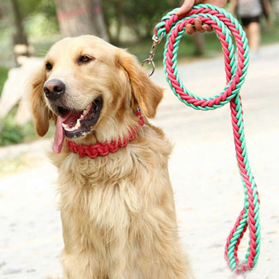 paw prime Pink/Green Woven Nylon Rope Leash + Matching Collar