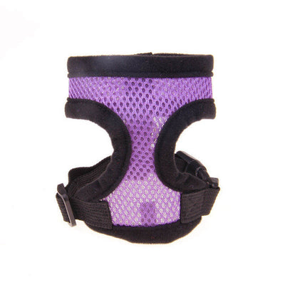 paw prime Purple-Black Edge / L Paw Prime's Harnesses