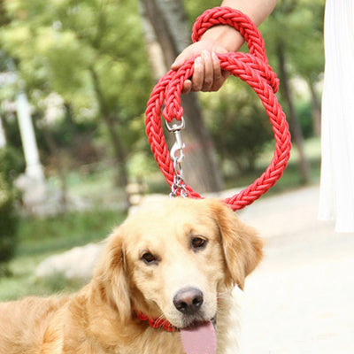 paw prime Red Woven Nylon Rope Leash + Matching Collar