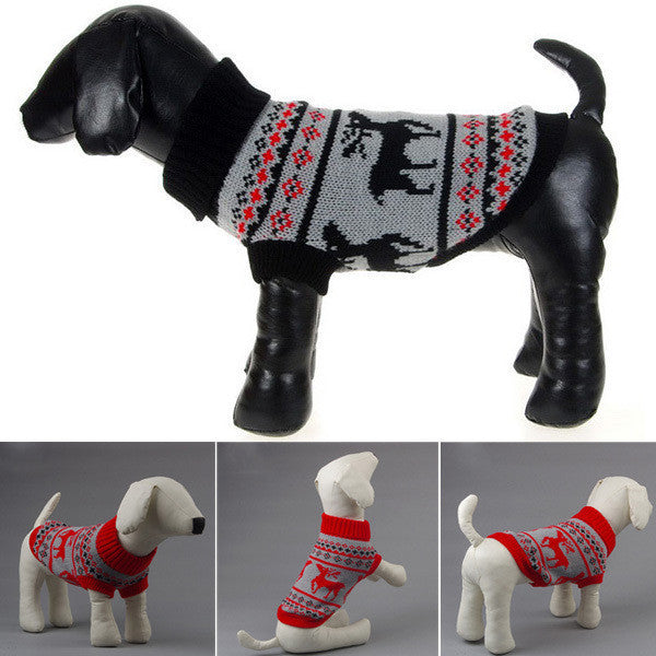 Paw Prime Winter Sweaters!