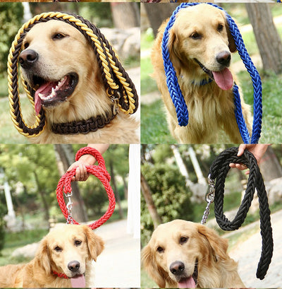 paw prime Woven Nylon Rope Leash + Matching Collar