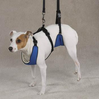 Pet Retail Lift & Lead 4-In-1 Dog Harness