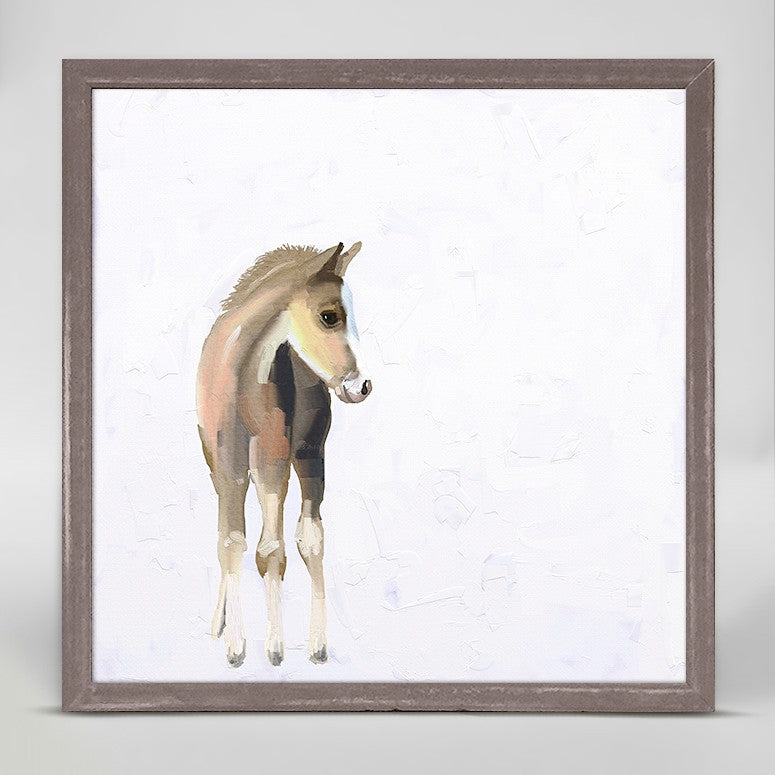 Baby Horse Mini Framed Canvas 6x6-Greenbox-The Bugs Ear