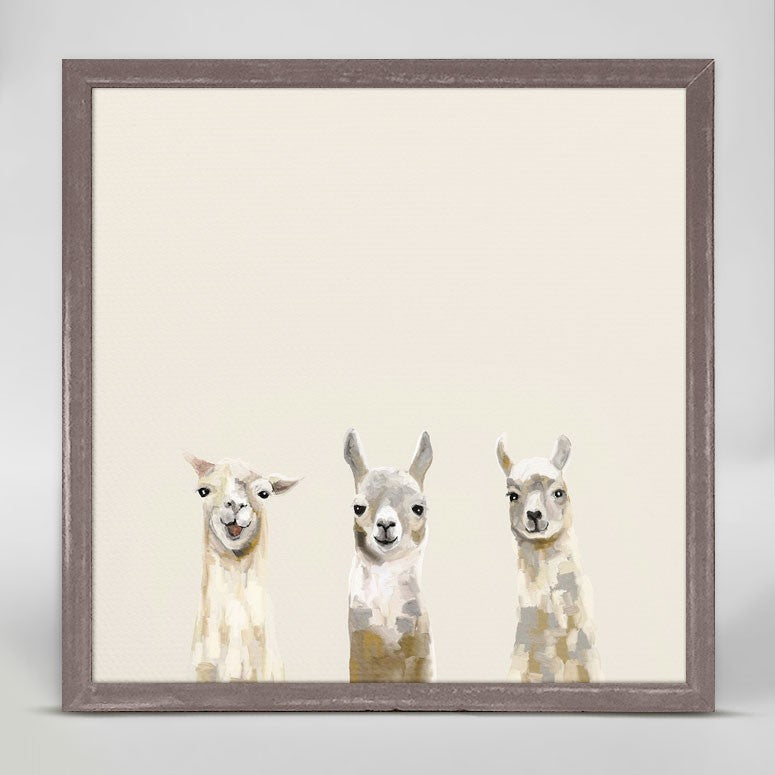 Baby Llama Trio Mini Framed Canvas 6x6-Greenbox-The Bugs Ear