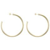 Sheila Fajl Everybody's Favorite Hoop Earrings Brushed Gold-Sheila Fajl-The Bugs Ear