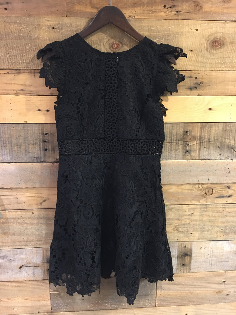 BB Dakota Calvin Lace Dress in Black-BB Dakota-The Bugs Ear