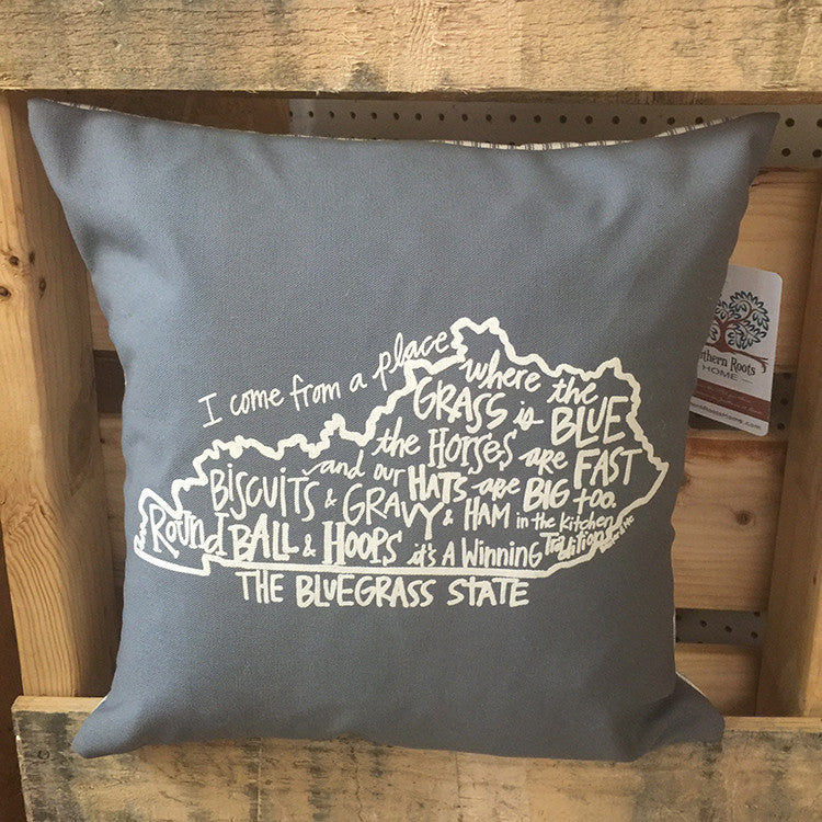 Southern Roots Pillow I Come From a Place-Southern Roots-The Bugs Ear