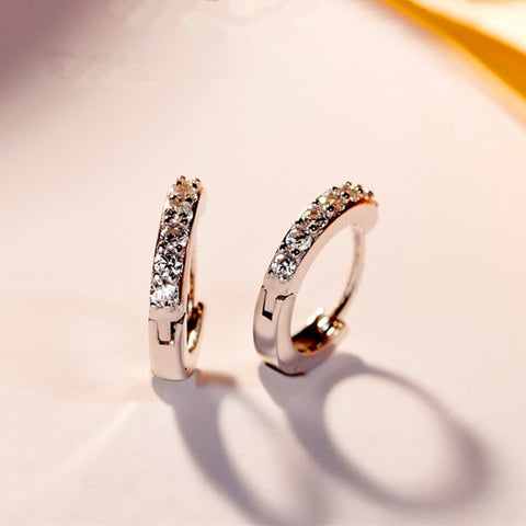 Fashion Annular Zircon Silver Hoop Earrings