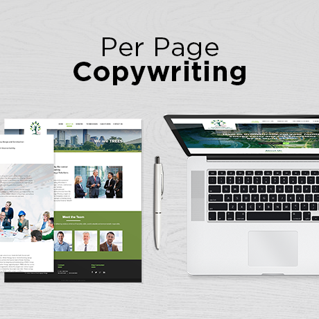 Reseller - Per Page Copywriting