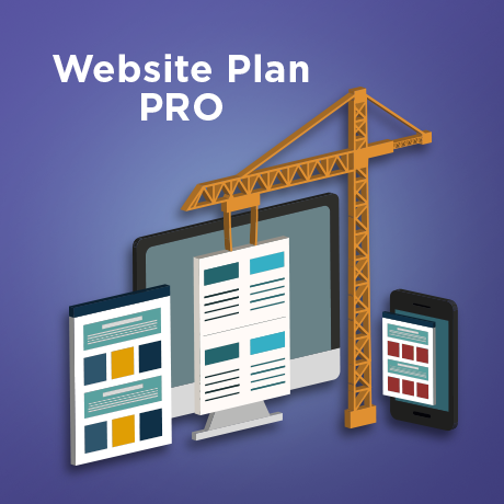 Website Plan PRO