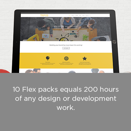 Web Works 89 - Flex Bundle 10