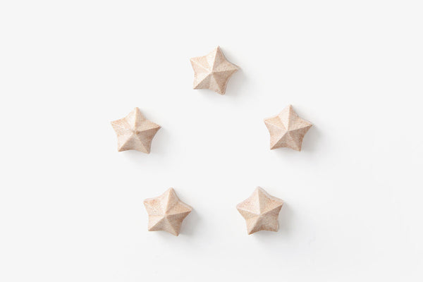 Pana Objects Auriga Magnet set of 5| Lifestyle & Stationery| Bibliotek