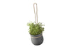 GROW-IT Herb Pot, Grey | Planters & Pots | Bibliotek