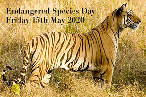 EVENT | ENDANGERED SPECIES DAY 2020