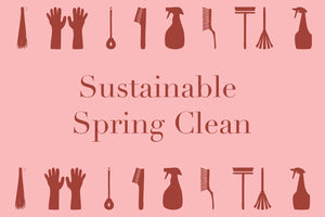 SUSTAINABILITY | THE NEW SPRING CLEAN