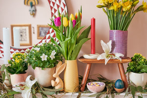 Easy Ways to Refresh Your Home Decor for Spring