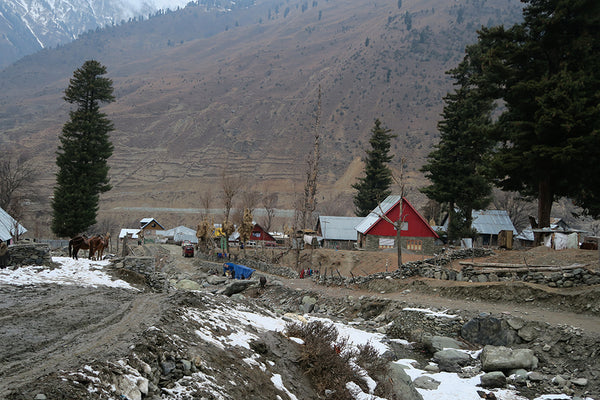 kashmir in the snow