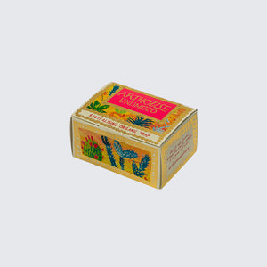 ARTHOUSE Unlimited Organic Soap 'Cactus Revitalising'