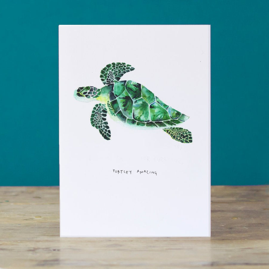 LIZ TEMPERLEY Turtley Amazing Greetings Card