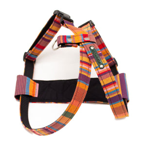 Coastal Kikoy Dog Harness