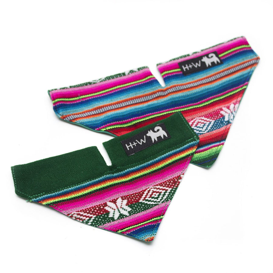 Inca Holly Dog Bandana