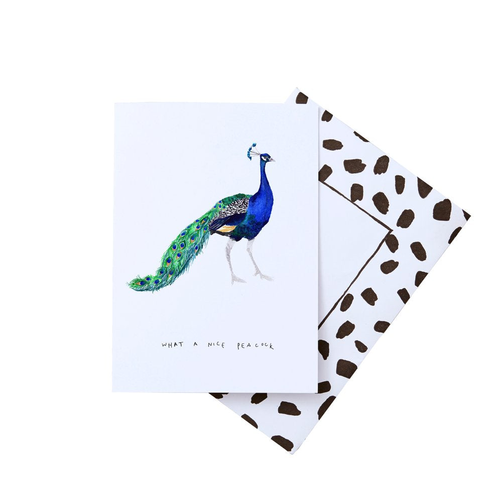 LIZ TEMPERLEY What a Nice Peacock Notecard