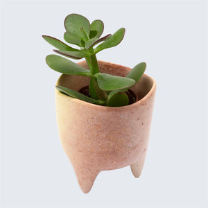 Kenyan Soapstone Hand Carved Small Plant Pot 'Pink'