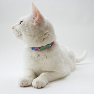 Nebula Cat Collar