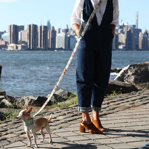 New York! New York! Hands Free (Coupler) Dog Lead
